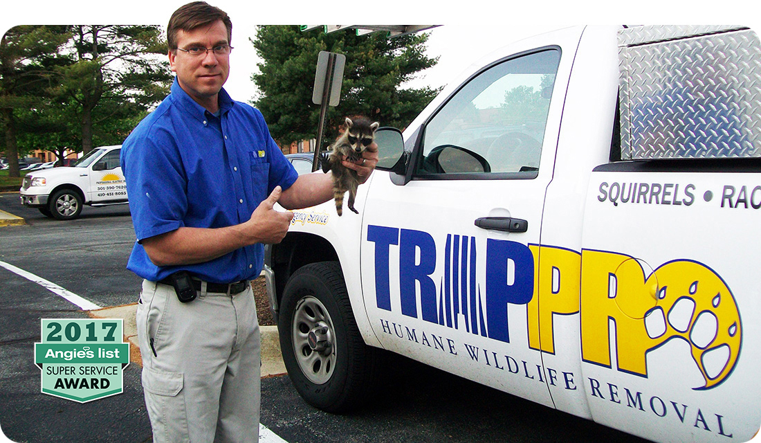 Trappro Wildlife Removal MD DC VA