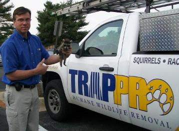 Trappro is ready to assist with trapping and removal of wild animals from your home